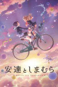 Adachi to Shimamura [All Seasons]