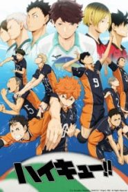 Haikyuu!! [All Seasons]
